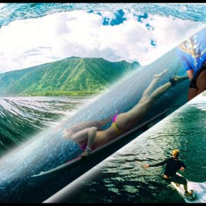 Born To Surf